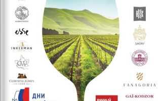 Акции ОКЕЙ сегодня: каталог Вино России с 29 апреля по 23 июня 2021 года